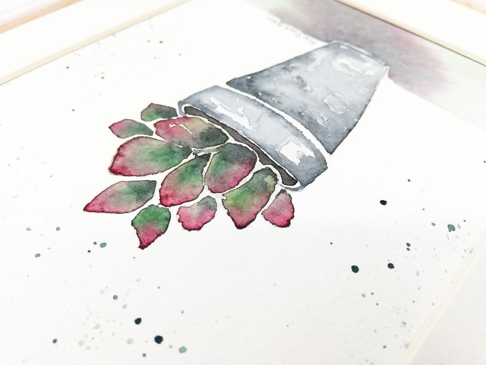 Sukulentas. Originalus akvarele pieštas paveiklas.
